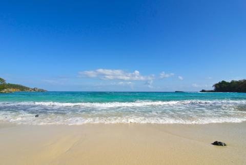 UDC & Winnifred Beach