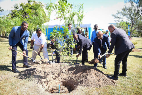 Houses-of-Parliament-update-and-tree-planting